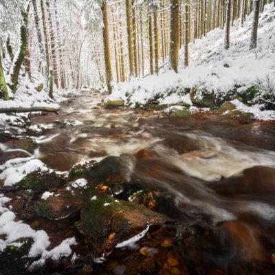 Ardennen sneeuw