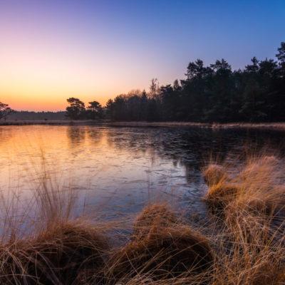 Winter sunrise bij het Kootwijkerven