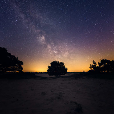 dutch milky way