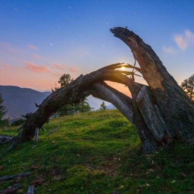 Oostenrijkse Alpen tijdens blue hour