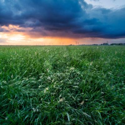 Sunset in polder mastenbroek in Zwolle
