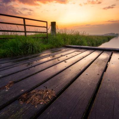 Sunset in de mastenbroeken polder
