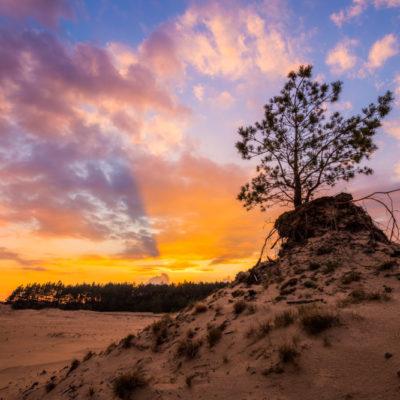 sunset op het hulshorsterzand op de Veluwe