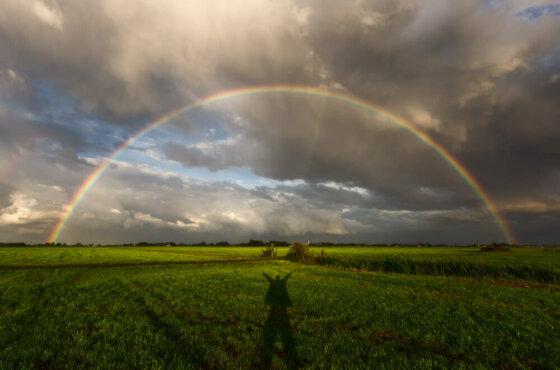 Fotocollectie   Onweer, storm en andere weersverschijnselen