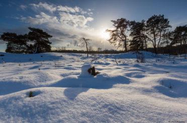 Sneeuw op de Veluwe – Timelapse