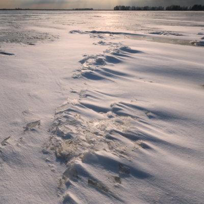 sneeuw veluwemeer