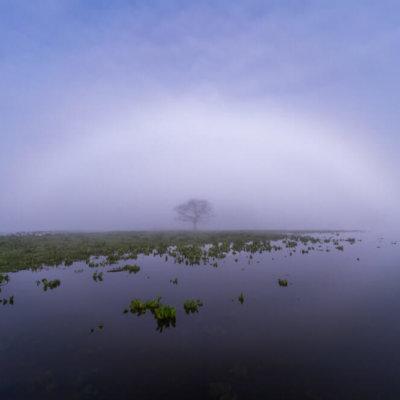 mistboog nederland
