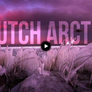 Dutch Arctic
