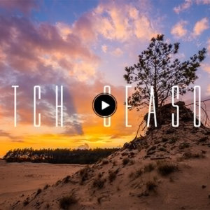 Dutch Seasons – Timelapse Veluwe