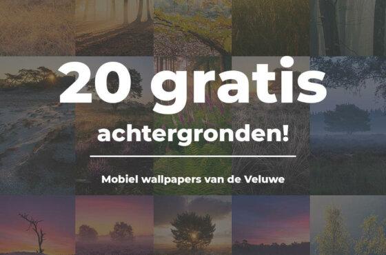 20 gratis HD mobiel achtergronden van de Veluwe!