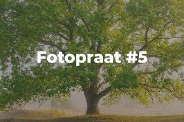 Fotopraat #5 | De kracht van megapixels: croppen!