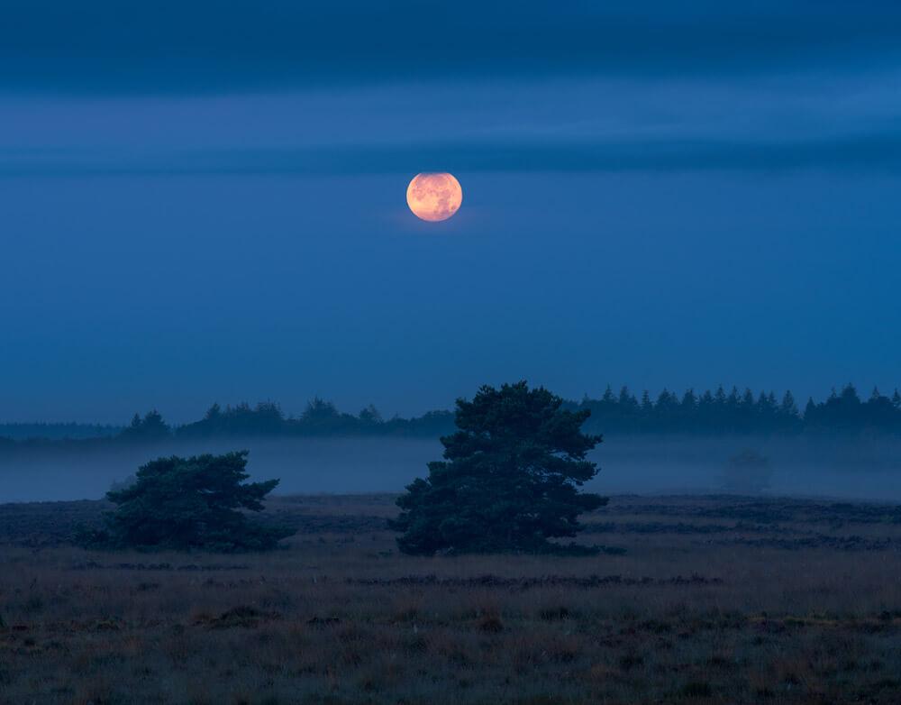 volle maan mist