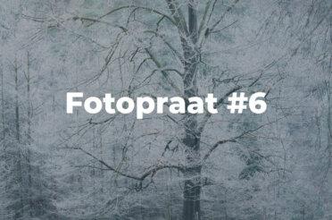 Fotopraat #6 | Rijp op de Veluwe